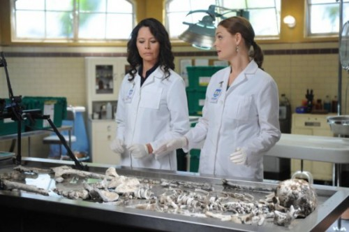 Bones Season Nine 9 DVD Review Szene 3