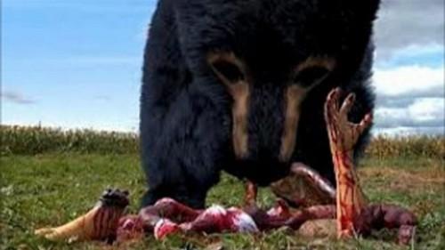 Rise of the Animals - Mensch vs. Biest Blu-ray Szene 1