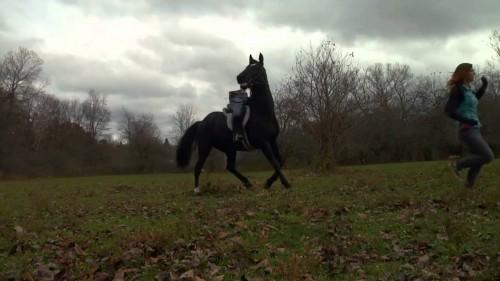 Rise of the Animals - Mensch vs. Biest Blu-ray Szene 3