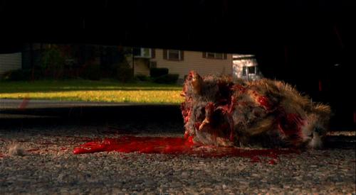 Rise of the Animals - Mensch vs. Biest Blu-ray Szene 4