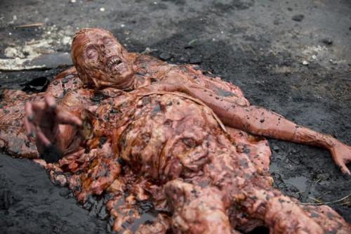 The Walking Dead Season 5 Blu-ray Review Szene 7d