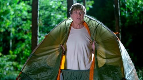 Picknick mit Bären Blu-ray Review Szenenbild 2