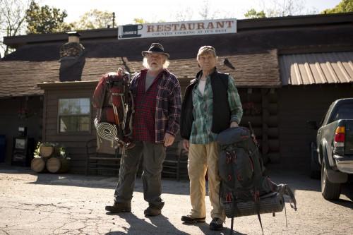 Picknick mit Bären Blu-ray Review Szenenbild 8