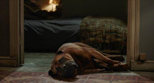 Freunde fürs Leben Blu-ray Review Szene 4