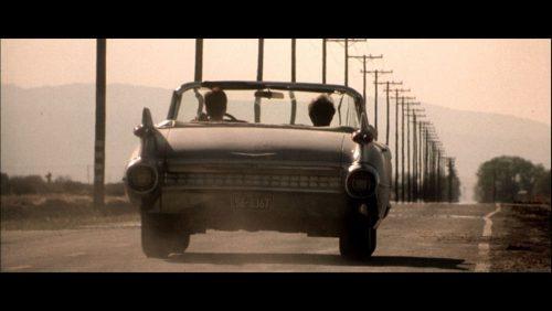 Finding Graceland - Unterwegs mit Elvis Blu-ray Review Szene 2