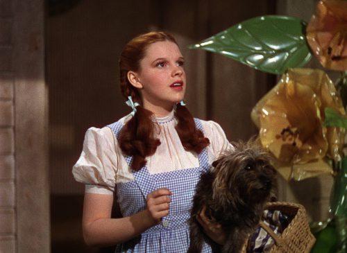 Zauberer von Oz Blu-ray Review Szene 1