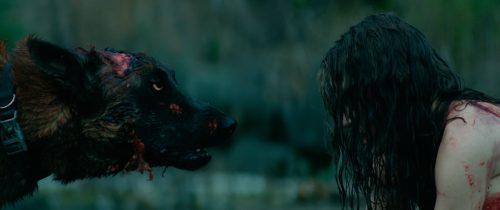 Cabin Fever - The New Outbreak Blu-ray Review Szene 7