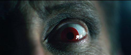 bunny-und-sein-killerding-blu-ray-review-szene-6