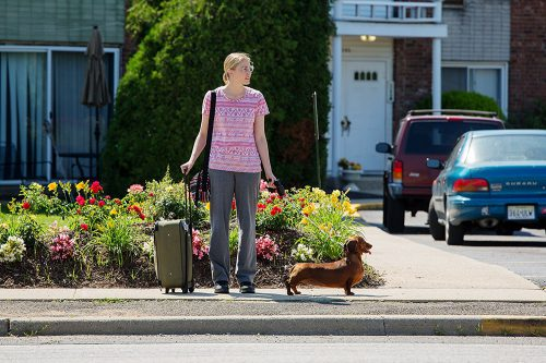 wiener-dog-blu-ray-review-szene-3