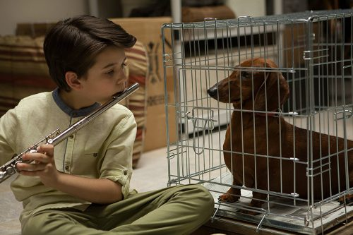 wiener-dog-blu-ray-review-szene-4