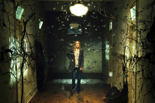 Before I Wake Blu-ray Review Szene 3