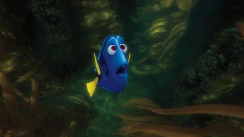 Findet Dorie 3D Blu-ray Review Szene 8