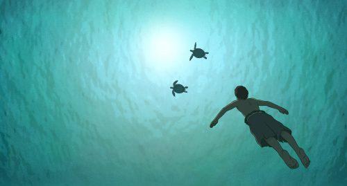 Die rote Schildkröte Blu-ray Review Szene 5