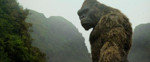 Kong Skull Island Blu-ray Review Szene 18