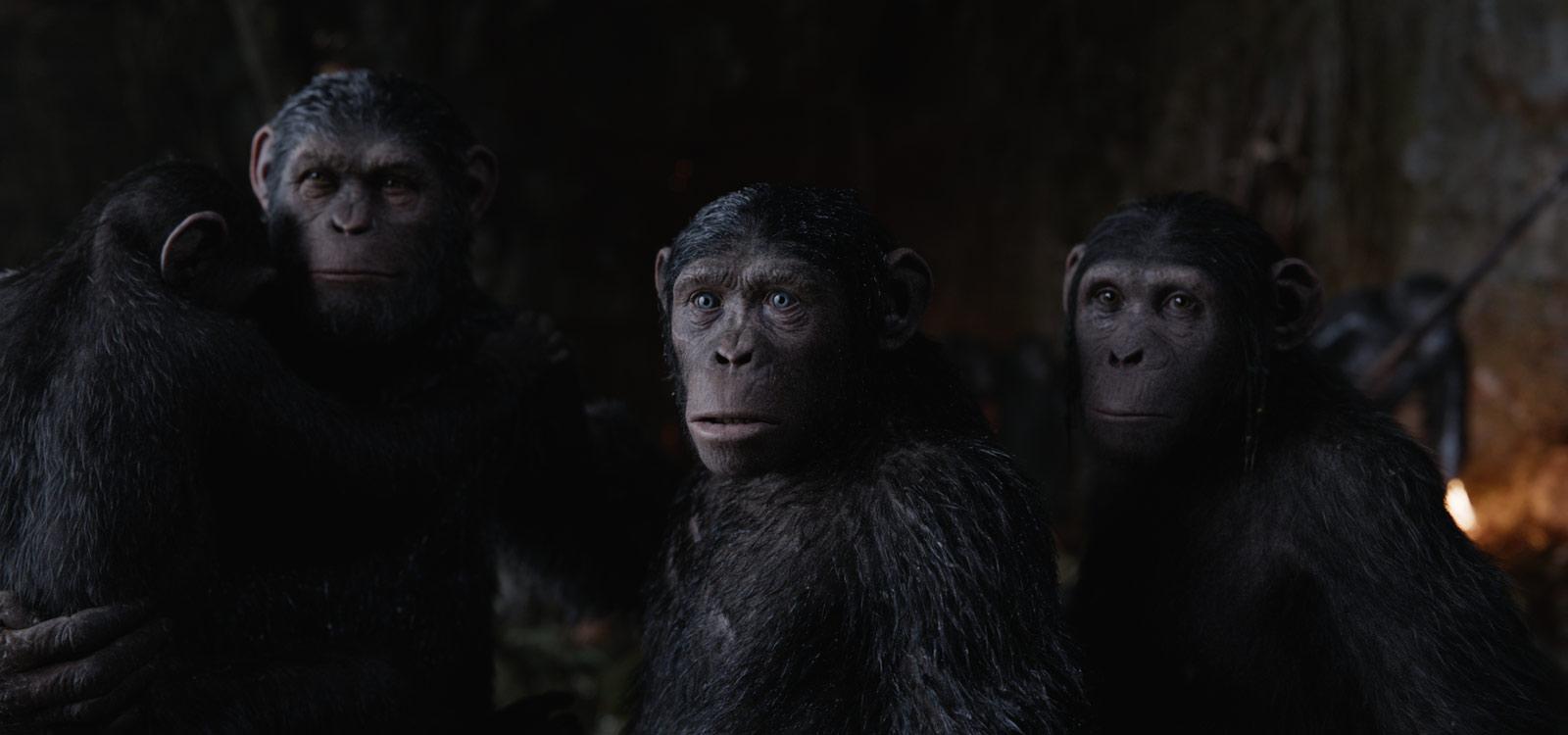 Planet Der Affen - Revolution Stream