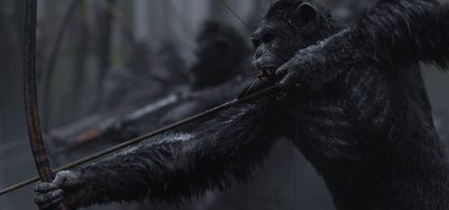 Planet der Affen Survival 4K UHD Blu-ray Review Szene 15