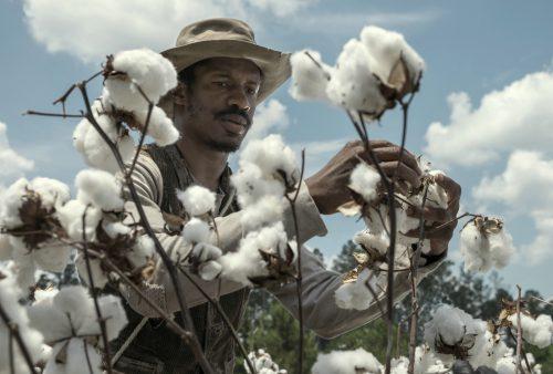 The Birth Of A Nation - Aufstand zur Freiheit Blu-ray Review Szene 1