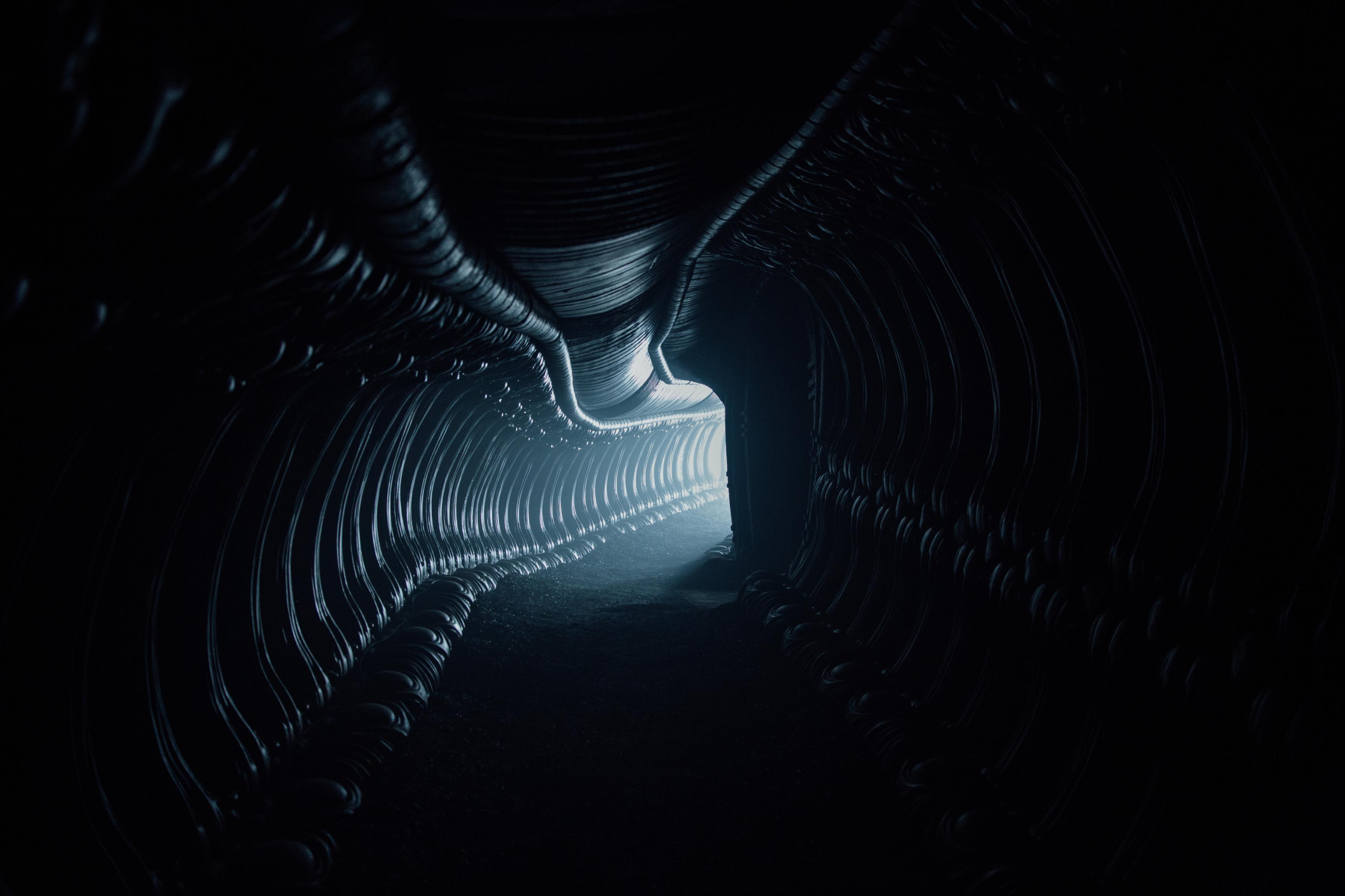 Alien Covenant Blu-ray Review Szene 2