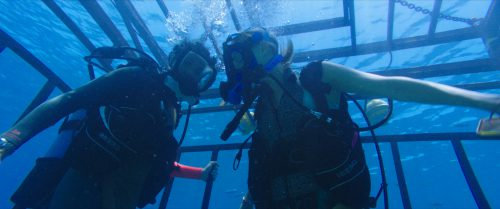47 Meters Down Blu-ray Review Szene 3