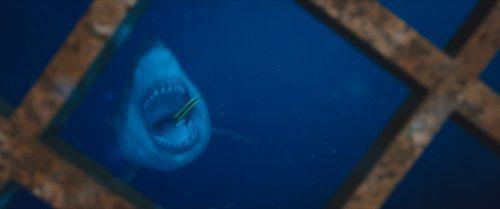 47 Meters Down Blu-ray Review Szene 4