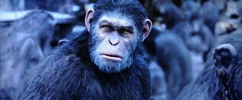 Planet of the Apes Survival Bildvergleich BD vs UHD 6