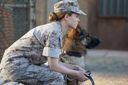 Sergeant-Rex-Nicht-ohne-meinen-Hund-Blu-ray-Review-Szene-9.jpg