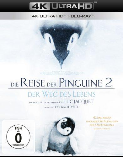 Die Reise der Pinguine 4K UHD Blu-ray Review Cover