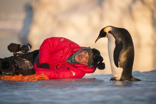 Die_Reise_der_Pinguine_2_Szenenbilder_05
