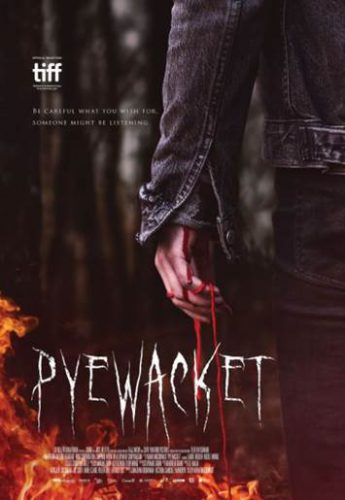 Pyewacket Review Rezension Cover