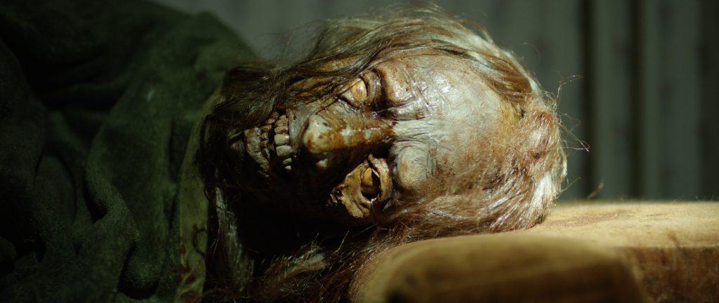 Zombies - Überlebe die Untoten Blu-ray Review Szene 2