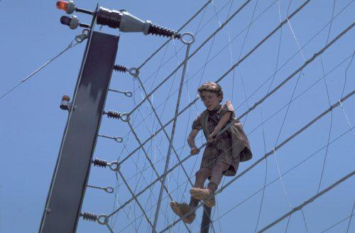 Jurassic Park 4K UHD Blu-ray Review Szene 5