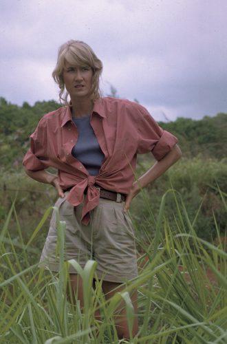 Jurassic Park 4K UHD Blu-ray Review Szene 6