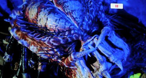 Predator 2 BD vs UHD Bildvergleich 21