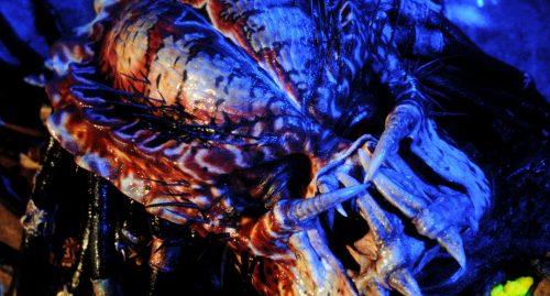 Predator 2 BD vs UHD Bildvergleich 22