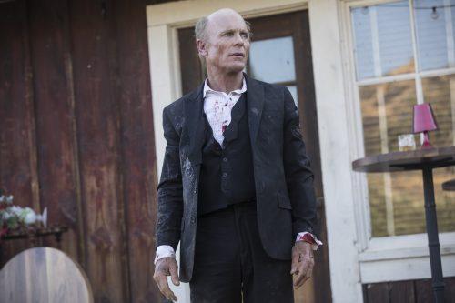 westworld season 2 4k uhd blu-ray review szene 13