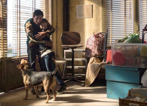 dogman blu-ray review szene 2