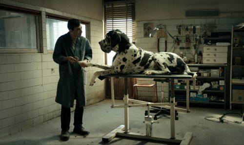dogman blu-ray review szene 5