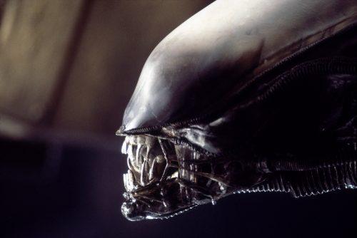 alien 40th anniversary steelbook 4k uhd blu-ray review szene 10
